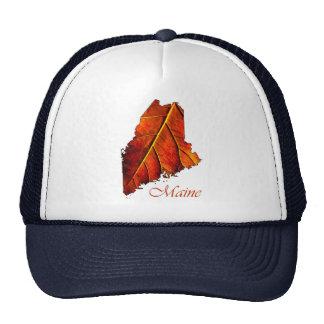 Chapéus do presente dos chapéus   Maine de Maine Boné