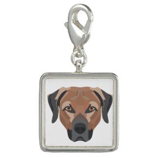 Charms Com Fotos Cão Brown Labrador da ilustração