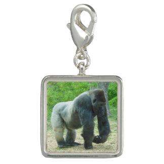 Charms Com Fotos Encanto do gorila