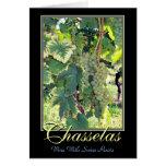 Chasselas - vinho branco com raizes suíças - Rolle Cartao