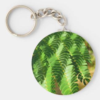 Chaveiro A árvore de seda persa sae do anel chave