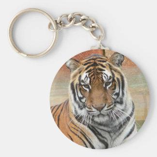 Chaveiro Alugueres Tigres no projecto