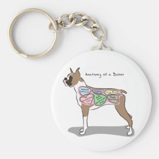 Chaveiro Anatomia de presentes de um cão do pugilista