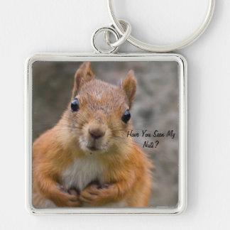 Chaveiro Anel chave do grande esquilo quadrado