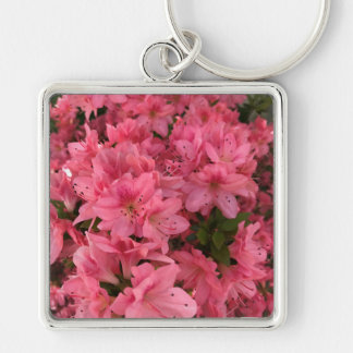 Chaveiro Arbusto de florescência cor-de-rosa brilhante