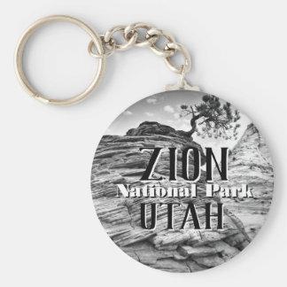 Chaveiro Árvore dos bonsais do parque nacional de Zion