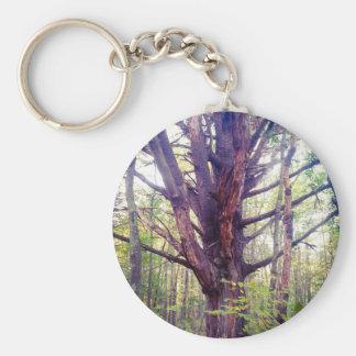 Chaveiro Árvore enevoada