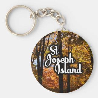Chaveiro Árvores de bordo da ilha de St Joseph
