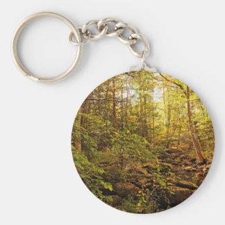 Chaveiro Árvores do outono no ribeiro de Willard