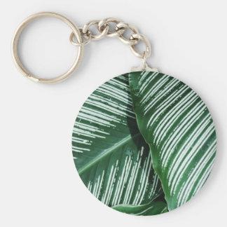 Chaveiro As folhas tropicais verdes com branco listram o