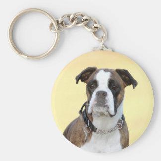 Chaveiro Benson o cão do pugilista