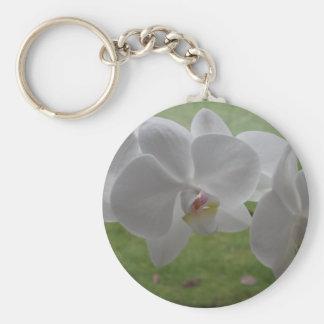 Chaveiro branco da orquídea