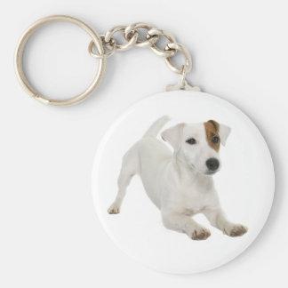Chaveiro Branco de Jack Russell Terrier e cão de filhote de