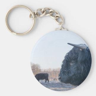 Chaveiro Cabeça do escocês escocês do touro preto com vaca