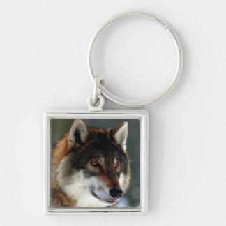 Chaveiro Cabeça do lobo