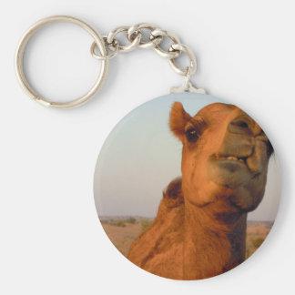 Chaveiro Camelo no deserto 2