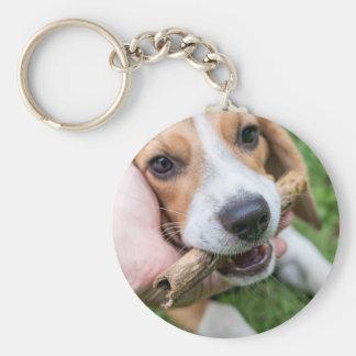 Chaveiro Cão com vara