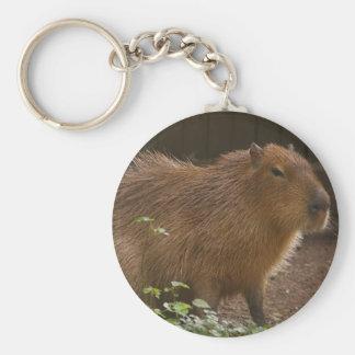 Chaveiro Capybara