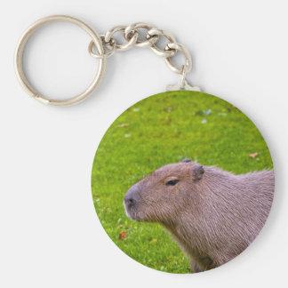 Chaveiro Capybara animal surpreendente