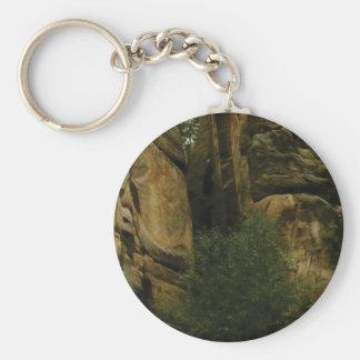 Chaveiro cara amarela da rocha com árvores