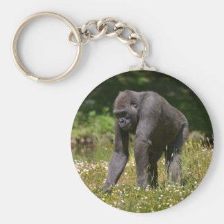 Chaveiro Chimpanzé na grama de florescência