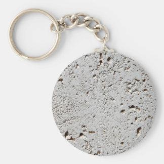 Chaveiro Close up fóssil da superfície do azulejo da
