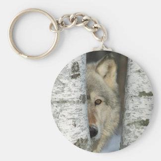 Chaveiro com a foto do lobo cinzento em árvores de
