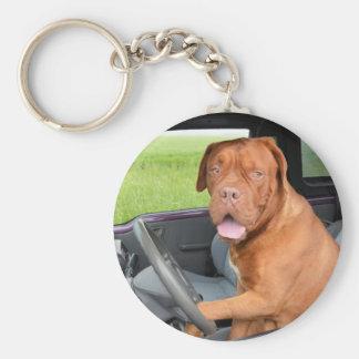 Chaveiro Condução de Dogue de Bordéus
