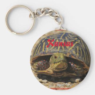Chaveiro Corrente chave da tartaruga de Shell da caixa de