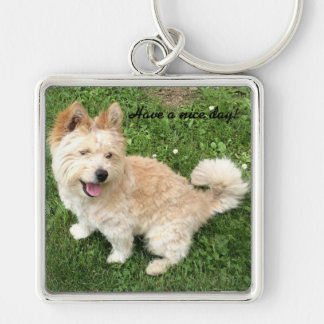 Chaveiro Corrente chave para amantes do cão