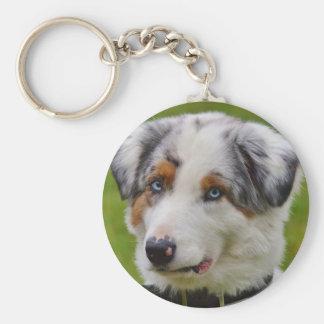 Chaveiro Corrente chave personalizada bonito do cão