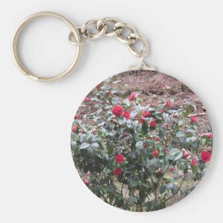 Chaveiro Cultivar antigo da flor do japonica da camélia