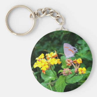 Chaveiro da borboleta