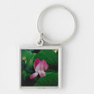 Chaveiro da imagem da flor do Nymphaea