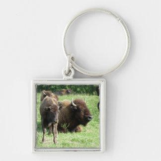 Chaveiro da imagem do búfalo