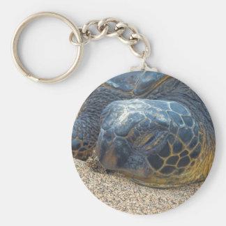 Chaveiro Da tartaruga fim acima