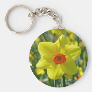 Chaveiro Daffodils amarelos alaranjado 01,0