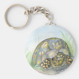 Chaveiro do botão da tartaruga de caixa
