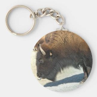 Chaveiro do búfalo