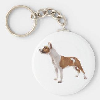 Chaveiro do cão de filhote de cachorro de