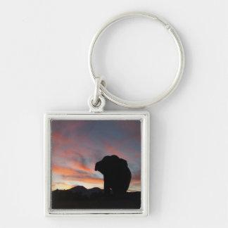 Chaveiro do elefante do por do sol