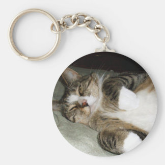 Chaveiro do gato Manx