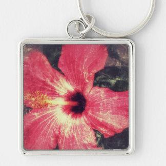Chaveiro do hibiscus afligido