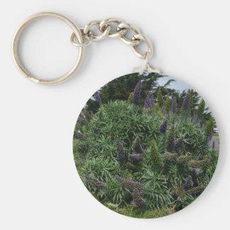 Chaveiro do Lilac de Califórnia