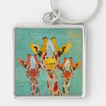 Chaveiro espreitando de três girafas