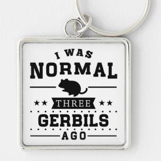 Chaveiro Eu era três Gerbils normais há