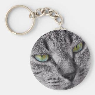 Chaveiro eyed verde do gato de gato malhado
