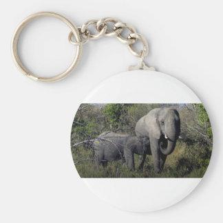 Chaveiro Família do elefante africano
