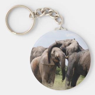 Chaveiro Família do elefante de África