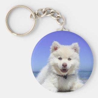 Chaveiro Filhote de cachorro ronco branco com olhos azuis